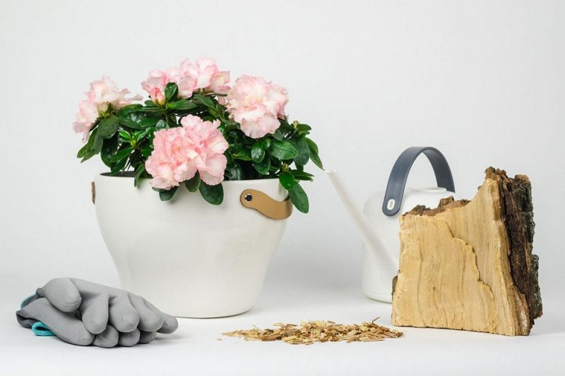 Create beautiful flower pot in the balcony of your house