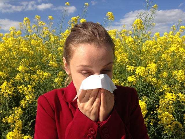 Handling Hay Fever With Sensitive Skin