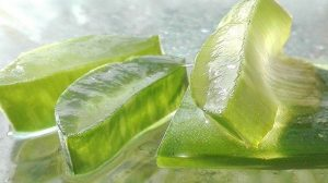 Read more about the article How aloe works on the skin